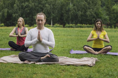 Group yoga class on the green grass in the park stock photos