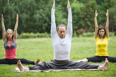 Group yoga practice with an instructor on green grass in the park Stock Image