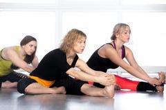 Group of yogi females stretching in yoga class. Group of beautiful females sitting yoga asana in class, prepare for Janu Sirsasana, djanu shirshasana (tilt head Stock Images