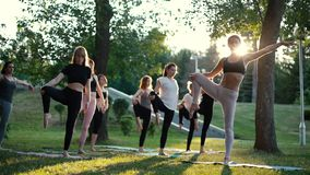 Group of yogini women standing on yoga mats and balancing on leg in pose tree. Group of yogini women standing on yoga mats and balancing on one leg in pose tree stock video