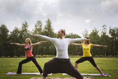 A group of yogis in a graceful pose during outdoor pursuits on the grass Stock Photo