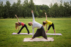 A group of yogis in a graceful pose during outdoor pursuits Stock Photo
