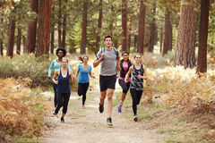 Group of young adult friends running in a forest Stock Photography