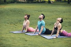 Yoga practice. Group of young Asian people enjoying yoga practice in the park Royalty Free Stock Image