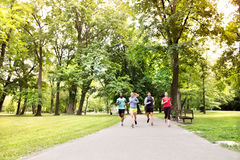 Group of young athletes running in green sunny park. Stock Images