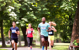 Group of young athletes running in green sunny park. Royalty Free Stock Photography