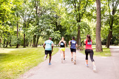Group of young athletes running in green sunny park. Royalty Free Stock Images