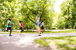 Group of young athletes running in green sunny park. Stock Image