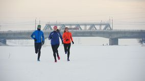 Group of young athletes running technically in winter forest. Sport and leisure concept stock video