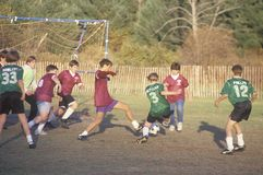 Group of young boys playing soccer Stock Image