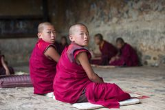 Two Bhutanese young novice monk turn their head to look you when during study , Bhutan. This group of young Buddhist novice monks reading and chanting . boys stock image
