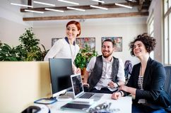 Group of young businesspeople using laptop in office, start-up concept. A group of young businesspeople using laptop in office, start-up concept stock photo