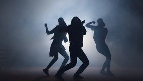 Group of young female dancers on the street at night. Group of young female dancers on the street at night stock video