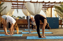 Group of young females practicing yoga on the seaside during the sunrise. Group of young caucasian females practicing yoga on the seaside during the sunrise stock photo