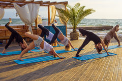 Group of young females practicing yoga on the seaside during the sunrise Stock Photos