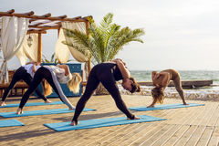 Group of young females practicing yoga on the seaside during the sunrise Royalty Free Stock Image