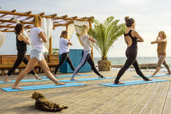 Group of young females practicing yoga on the seaside during the sunrise Stock Image