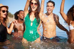 Group Of Young Friends Having Fun In Sea Together Stock Photography