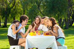 Group of young friends picnicking in a park Royalty Free Stock Photos