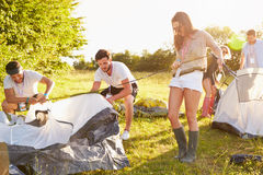 Group Of Young Friends Pitching Tents On Camping Holiday Royalty Free Stock Image