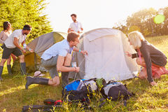 Group Of Young Friends Pitching Tents On Camping Holiday Stock Images