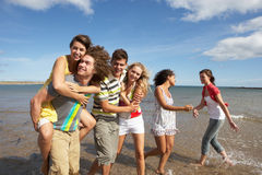 Group Of Young Friends Walking Along Shoreline. Group Of Young Friends Walking Along Summer Shoreline Royalty Free Stock Image