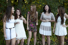 Group of Young Girls Stock Photos