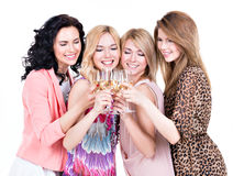 Group of young happy women have party. Group of young happy women have party and drinking wine - isolated on white royalty free stock image