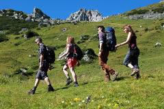 Group of young hikers. Group of young backpackers hiking in the mountains stock photography