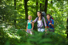 Group of young hikers in the mountains Royalty Free Stock Photos