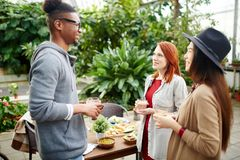 Friends talking. Group of young intercultural friends having talk by festive table in garden room Stock Photography