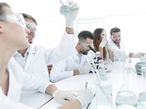 Young microbiologists working in the laboratory. Stock Photos