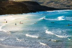 Group of young people at beach going surfing royalty free stock images