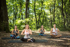 Group of young people doing yoga in green forest Royalty Free Stock Images