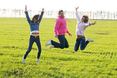 Group of young people on a green field Royalty Free Stock Images