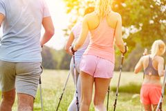 Group of young people nordic walking. Group of young people from hiking club nordic walking stock photography