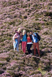 Group Of Young People Hiking Through Countryside Royalty Free Stock Image