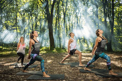 Group of  young people keep in shape exercising in forest Stock Image