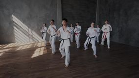 Group of young people practice martial arts. Warlike, brave male and female teens learning fight technique. They show stock video footage