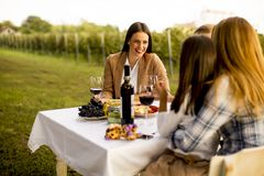 Young people sitting by the table and drinking red wine in the v. Group of young people sitting by the table and drinking red wine in the vineyard royalty free stock image