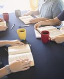 Group of People Studying the Bible Outside royalty free stock image