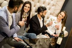 Group of young people toasting with white wine. Cheerful group of young people toasting with white wine Royalty Free Stock Photography