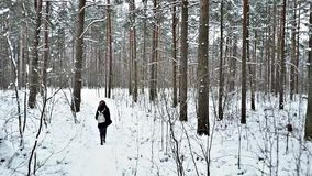 Group of young people is walking along the forest`s trail on cloudy winter day stock video footage