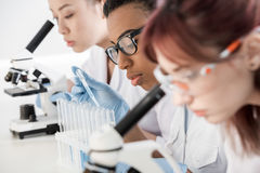 Group of young professional scientists working with microscopes in chemical lab Stock Photo