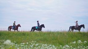 Group of young riders on horseback galloping forward the summer field