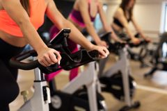 Group of young slim women workout on exercise bike in gym. Sport and wellness lifestyle concept stock photo