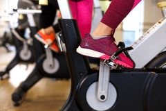 Group of young slim women workout on exercise bike in gym. Sport and wellness lifestyle concept stock images