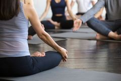 Group of young sporty people sitting in Lotus pose, closeup royalty free stock images
