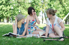 Group of young student using laptop together. In the park Stock Photo