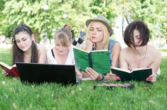 Group of young student using laptop together. In the park Royalty Free Stock Photo